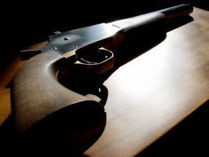 Av Tüfekleri, silah modelleri